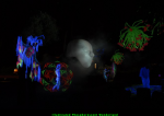 Illuminated Phosphorescent Wonderland