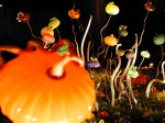 Environmental installations of illuminated hand blown glass sculptures add an otherworldly glow to both indoor and outdoor settings